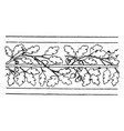 oak border undulate band is a wavelike design of vector image vector image