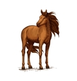 Sketch of horse standing wild mustang or stallion vector image