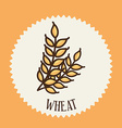 wheat design vector image vector image
