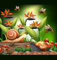 background scene with bee and snails in garden vector image vector image