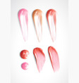 collection of various smears lipstick on white vector image vector image