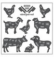 domestic animals silhouettes vector image vector image