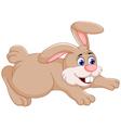 funny rabbit cartoon jumping vector image