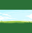 summer green lawn with grass vector image