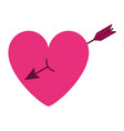 cute heart in love with arrow decoration vector image