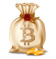 bitcoin in the bag vector image vector image