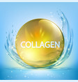 collagen serum drop pill with cosmetic hyaluronan vector image vector image