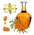 colorful of Sea Buckthorn oil 2 vector image vector image
