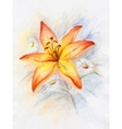 Floral Pattern with Lily vector image