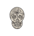 Sugar Skull Tattoo Etching vector image