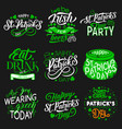 patrick day party irish traditional holiday icons vector image