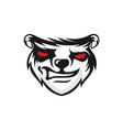 angry bear logo design vector image
