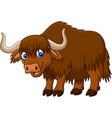 cartoon happy yak vector image