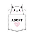 cat face in pocket adopt me pink heart cute vector image vector image