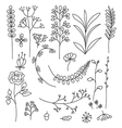doodle floral elements vector image vector image