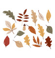 forest leaf hand drawn set colorful vector image vector image