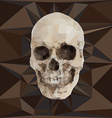 Geometric triangular of human skull vector image vector image