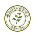 marjoram essential oil label aromatic plant vector image vector image