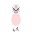 Pastel Pink Pineapple Design vector image