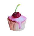 Watercolor Hand Drawn Cupcake with cherry vector image