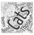Cats Bonding With Their Owners Word Cloud Concept vector image vector image