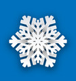 christmas paper winter white snowflake vector image vector image