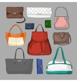 collection different women bags vector image