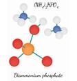 Diammonium phosphate N2H9PO4 molecule vector image vector image