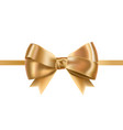 golden satin ribbons decorated with bow posh vector image