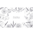 horizontal background with flowers for advertising vector image vector image