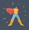 man in a superhero suit vector image
