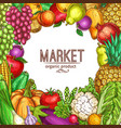 natural vegetables and fruits sketch poster vector image vector image