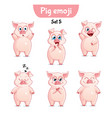 set of cute pig characters set 5 vector image vector image