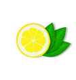 slice lemon with green leaves vector image vector image