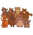 bears wild animal characters cartoon vector image vector image