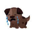 brown sad dog crying on a white background vector image vector image