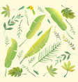 florals and leaves tropical paradise set vector image vector image