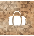 Hipster modern bag iconTriangle background vector image