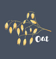oat flakes on dark background vector image