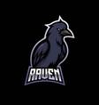 raven mascot logo design with modern vector image