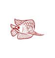red arowana fish mono line logo designs vector image