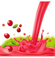 red splash of cranberry juice - isolated on vector image vector image