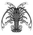 Sea Spiny Lobster vector image vector image