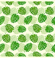 seamless background with set palm leaves vector image vector image