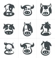 collection of symbols cow set of icons vector image