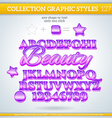 Beauty Graphic Style for Design vector image