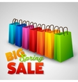 Big spring sale poster vector image vector image