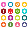 fruit icons many colors set vector image vector image