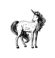 hand drawn unicorn black white sketch vector image vector image