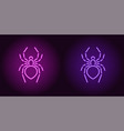 neon icon of purple and violet spider vector image
